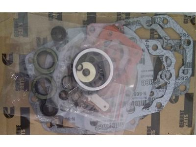 Cummins NT855 Fuel injection pump repair kit 3010242